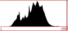 Digital Photography Histogram