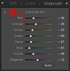 Lightroom Grayscale tool