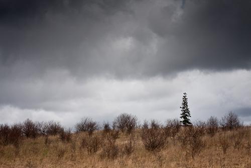 Rural landscape photo illustrating creative use of dark tones