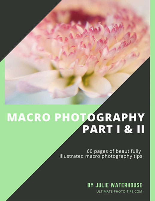 Close up & Macro Photography eBook